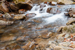 A waterfall on a mountain river Stock Photography