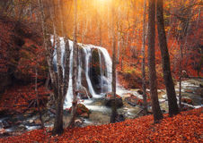 Waterfall at mountain river in autumn forest at sunset. Royalty Free Stock Images