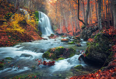 Waterfall at mountain river in autumn forest at sunset. stock photos