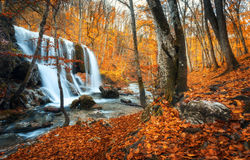 Waterfall at mountain river in autumn forest at sunset. Stock Images
