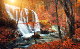 Waterfall at mountain river in autumn forest at sunset. Royalty Free Stock Photos