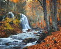 Waterfall at mountain river in autumn forest at sunset. Royalty Free Stock Image