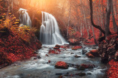 Waterfall at mountain river in autumn forest at sunset. Waterfall. Colorful landscape with beautiful waterfall at mountain river in the forest with red foliage