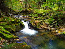 Waterfall on mountain river with moss on rocks Stock Image