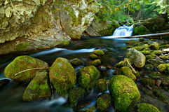 Waterfall on a Mountain Stream in the Forest Royalty Free Stock Images