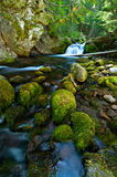 Waterfall on a Mountain Stream in the Forest Stock Photos
