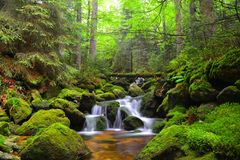 Waterfall on mountain stream in the Czech Republic. Royalty Free Stock Photography
