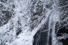 Waterfall in the mountain winter forest with snow-covered trees and snowfall. Mountainous place with rocks and cobblestone. Cloudy cold weather in twilights Stock Photography