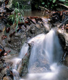 Waterfall in the mountains. Waterfall on the creek in autumn season Stock Photos