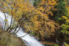 Waterfall in the mountains of Bulgaria Stock Images