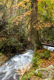 Waterfall in the mountains of Bulgaria Royalty Free Stock Images