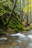Waterfall in the mountains of Bulgaria Royalty Free Stock Photography