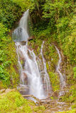 Waterfall in the mountains of Panama Stock Photos