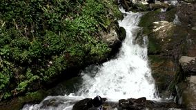 Waterfall in Mountains. River running water stream flow with small rift over the stone shelf stock video footage