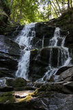 Waterfall in the mountains. Stock Photography