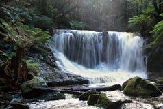 Waterfall_Mt Feld Lizenzfreie Stockbilder