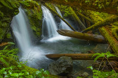 Waterfall at Murhut Creek in Olympic National Forest in Washington state Royalty Free Stock Image