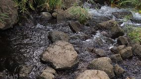 Waterfall at Mzima springs, Tsavo West Park in Kenya,