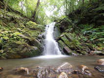 Waterfall in Nara, Japan. A beautiful waterfall in the forest hills above Nara, Japan Stock Photography
