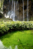 Waterfall in national park in Croatia. Europe Stock Photos