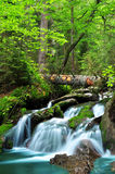 Waterfall. In the national park Sumava-Czech Republic Stock Photo