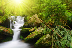 Waterfall in the national park Sumava Stock Photography