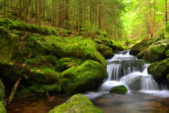 Waterfall in the national park Sumava Royalty Free Stock Images