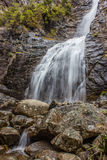 Waterfall in Native Bush Royalty Free Stock Photo