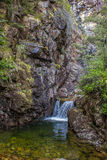 Waterfall in Native Bush Royalty Free Stock Image