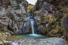 Waterfall in Native Bush Royalty Free Stock Image