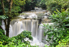Waterfall nature background Stock Images