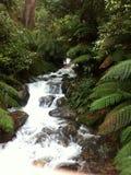 Waterfall nature natural stock image