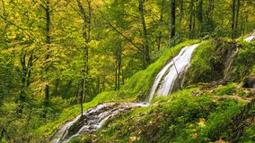 Waterfall, Nature, Nature Reserve, Vegetation royalty free stock photo