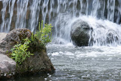 Waterfall, nature, stone. Isolated on natural background Stock Images