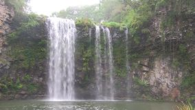Waterfall near Dorrigo Australia, in Cathedral Rock National Park. This region of Australia, sustains an indigenous ecology named `dry rainforest`, that is stock video