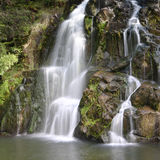 Waterfall, New Zealand Royalty Free Stock Images