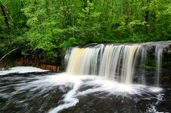 Waterfall in the North Woods Royalty Free Stock Photo