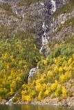 Waterfall in Norway. Waterfall and forest with colorful trees in Norway Royalty Free Stock Photo