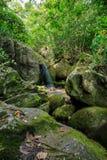 Waterfall in Nosy Mangabe, Madagascar wilderness Royalty Free Stock Photo
