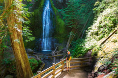Waterfall in Olympic Royalty Free Stock Photography