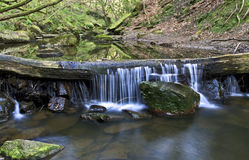 Waterfall over fallen tree, May Beck River near Falling Foss Royalty Free Stock Photo