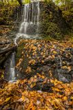 Waterfall over lush greens and golden fall foliage Royalty Free Stock Photography