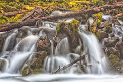 Waterfall Over Moss and Deadwood Stock Photo