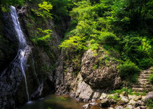Waterfall over a mossy creek Royalty Free Stock Photography