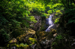 Waterfall over a mossy creek Stock Photo
