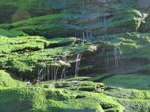 Waterfall over mossy rocks. Spacing over the rocks light shinning though Royalty Free Stock Photos