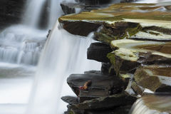 Waterfall. Over rocks at bozenkill preserve royalty free stock photo