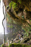 Waterfall in Palenque. Scene behind a waterfall in palenque Stock Photo