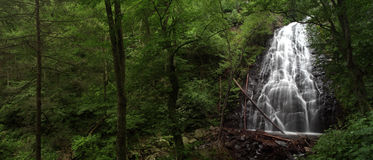 Waterfall panorama. A waterfall in the forest panorama Stock Image