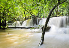 Waterfall in paradise Stock Image